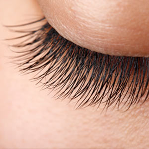 Upper (Classic/ Glamour) Lashes